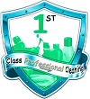 1ST CLASS PROFESSIONAL CLEANING